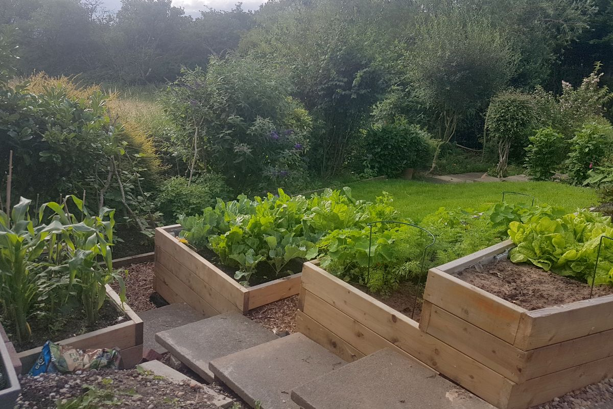 Raised bed tier created in Ilkseton by Benvale Home Maintenance