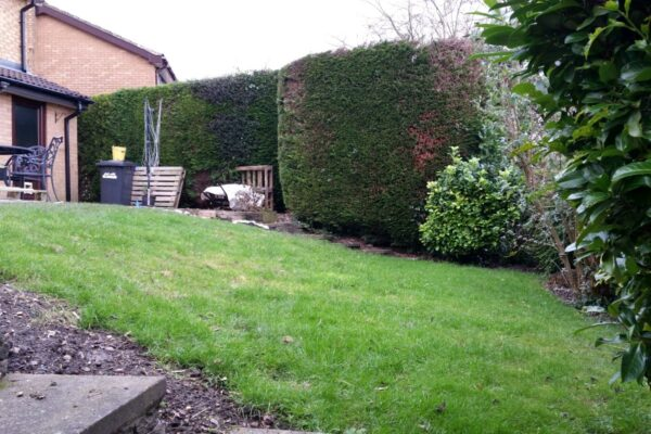 Garden Raised Beds for Vegetables in Ilkeston